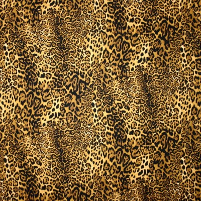Leopard Inspired Print - Sample